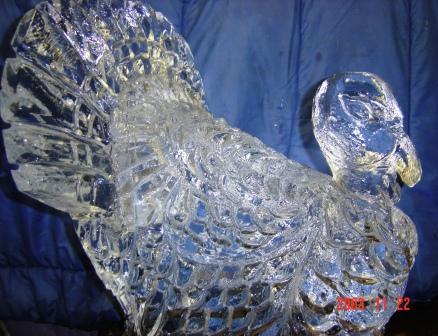 Ice Turkey